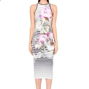 TED BAKER | Sew in Love Floral Striped MIdi Dress